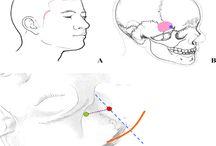 Austin Neurosurgery: Open Access