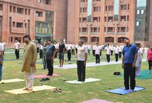 World Yoga Day / Sharda University celebrated the World Yoga Day
