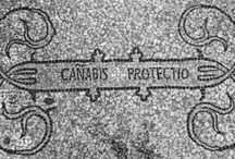 Historical pictures of cannabis / Historical pictures of cannabis