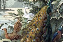 Peintures murales : sujets