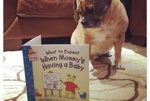 Pregnancy ideas
