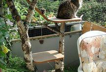 подставка для кошек