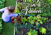 Garden Quotes / Gardening Quotes