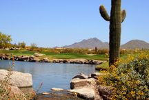 Arizona Courses / by Golfhub Teetimes