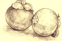 My drawings: still life etc.