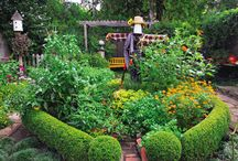Edible Landscaping / by Sunny Simple Life - Little Garden and coop in the big city