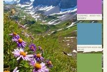 Color coordination  / by Meghan Prendergast
