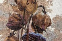 Акварель / акварель, цветы, фрукты, рисунок, живопись