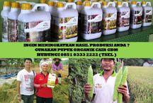HUB 0851 0333 2222 ( TSEL ) Peluang Bisnis dengan Modal Kecil / Peluang Bisnis dengan Modal Kecil Tapi Menguntungkan,Peluang Bisnis dengan Modal Kecil Untung besar,Peluang Bisnis dengan Modal Kecil,  Apakah GDM GDM merupakan Pupuk Bio Organik Cair yang di hasilkan dari bahan-bahan organik dan bakteri yang diperlukan oleh tanaman.  BERMINAT DENGAN PELUANG DARI KAMI HUBUNGI :  0851 0333 2222 ( TSEL ) http://peluangusahaagro.com/