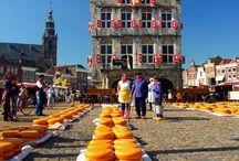 Hollands / Hollands
