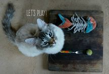 Felted wool natural cat toys