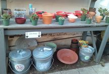 Our Nursery / Products, projects, photos and fun of our new Texas & University location.