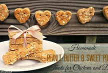 Homemade pet treats and food