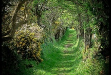 Ireland...all things Irish! / by Diane Leahan