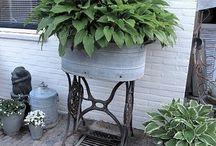 Tuinieren in Bakken en Potten / Tuintjes maken in Bakken Potten en met andere voorwerpen