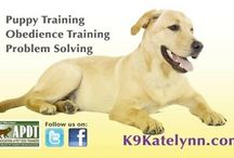 "Goodyear dog training k9katelynn! See more about phoenix training at k9katelynn.com! / All dogs trained in Goodyear,az by top Goodyear dog training k9katelynn! See more about phoenix in home dog training ""k9katelynn.com!"