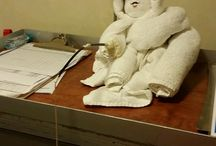 Cruise Ship Towel Animals / A collection of the favorite towel animals submitted by Cruiseline.com members from cruise ships around the world