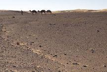 Maroc desrtul Merzouga / Dunele El Chebbi