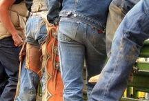 All things Cowboys