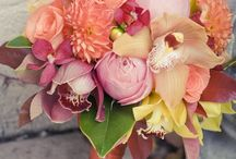 Flora / by Michelle Wilkins