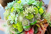 flower arrangements / ideas for floral decorations and centerpieces