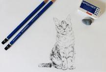 Cat Tutorials