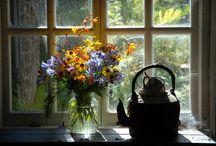 çiçek..cam kenarı karışık