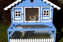 Rabbit and chicken houses / by Danielle Sevold
