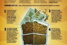 adubo e compostagem