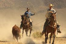 My heros have always been cowboys