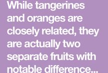 Oranges .. Data & There uses ..
