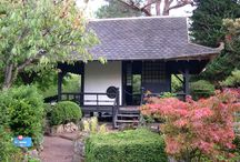 Tea Houses, Tree Houses, Sheds and Other Outbuildings