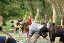 Yoga Courses in Rishikesh India