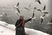 Kış-winter