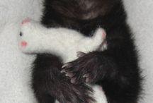 Fuzzy Faces