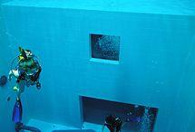 Unter Druck geht's uns am Besten! / Die beste Weise, Fische zu beobachten, besteht darin, selber zum Fisch zu werden (Jacques-Yves Cousteau)