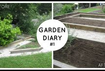 Garden Diaries / Watch our progress as we rip everything out of our vegetable garden and start fresh with fruit and veges we can juice and cook with. Oh and not to mention, I've never gardened before!