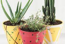 DIY Fruit Home Decor / Bring The Summer In: DIY Fruit Home Decor Ideas