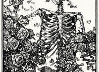 mindskull / моя коллекция черепов и скелетов