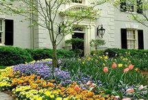 Landscape Design for Southern Mansions