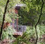 Leaf / Leaf cottage