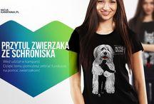2016 Fundacja Felineus w kampanii Przytul zwierzaka ze schroniska / Kupując koszulkę bądź torbę pomagasz. Dochód ze sprzedaży przeznaczony zostanie dla podopiecznych z Fundacji Felineus