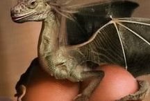 Here be Dragons / Fantasy creatures, Dragons, Unicorns and such / by Wendy Powell Chamberlain