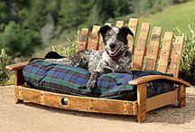 Doggies / Pets