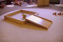 Waldorf & Montessori