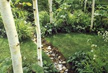 Landscape / Landscape design ideas
