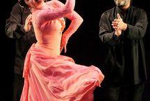 Dance Dynamics / Dances of the world