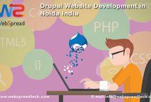 Drupal Website Development in Noida India