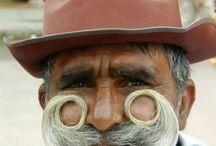 Moustaches à entretenir / by Dodo .