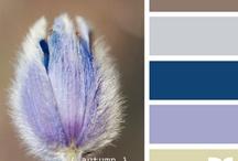 kleuren (1)